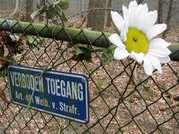 Wake Zeist bloem in hek.jpg